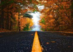 Jesień to doskonała pora na zrobienie kursu nauki jazdy, a egzamin łatwiej zdasz
